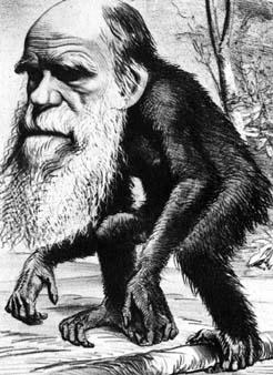Ridiculizaron a Darwin como era su deber
