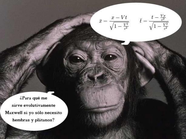¿Tienen finalidad evolutiva las matemáticas?