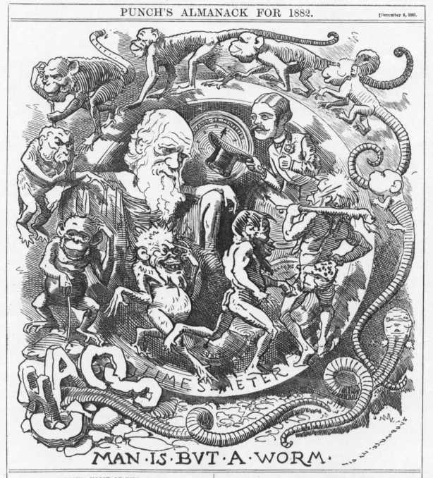 La teoría de Darwin abrió un marco nuevo de hipótesis y contrahipótesis, de tesis y refutaciones