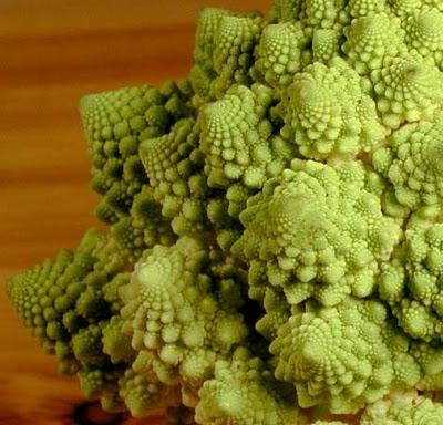 ¿Es este brócoli una computadora?