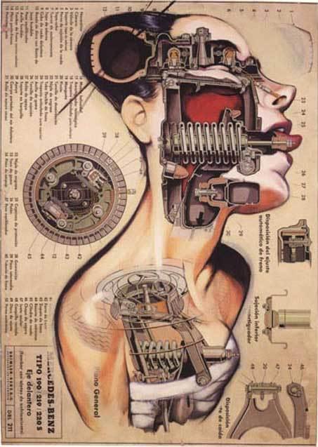 anatomias-fernando-vicente-1